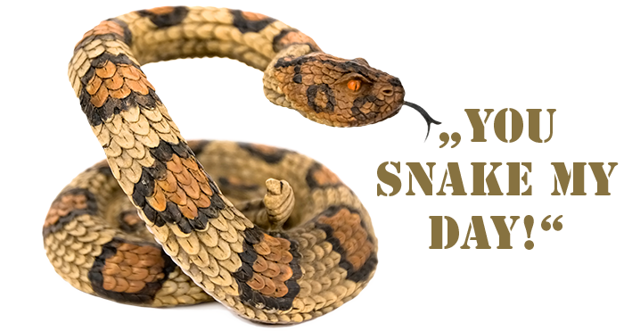 you_snake_my_day